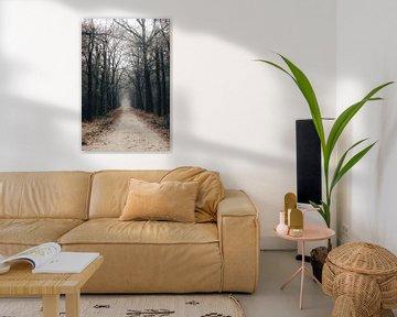 Moody forest van Eveline Gijsbers