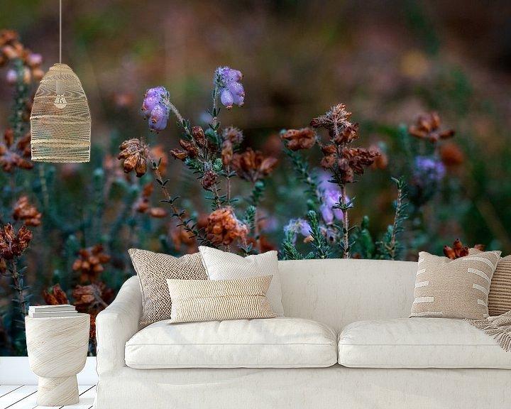 Sfeerimpressie behang: Laatste heide van het jaar aan het begin van de herfst van Andrea de Jong