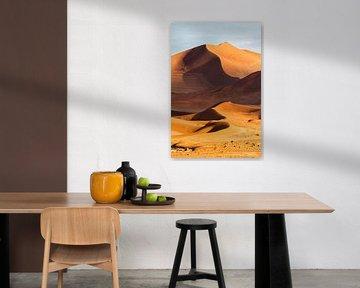 Sossusvlei Sanddünen von Henk Bogaard