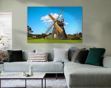 Windmühle, Nebel, Amrum, Deutschland von Alexander Ludwig