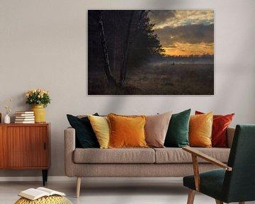 Mist op de Strabrechtse Heide tijdens zonsondergang. van Maurits van Hout