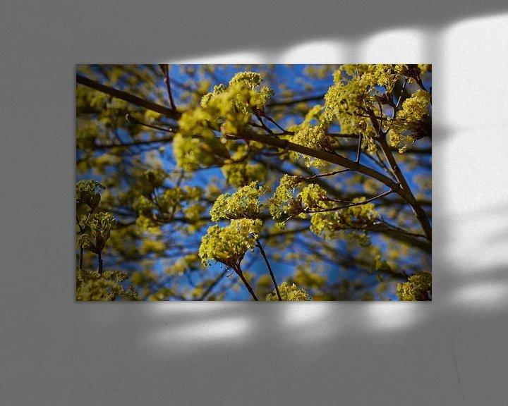 Impression: Chaux fleurie sur Klaus Feurich Photography