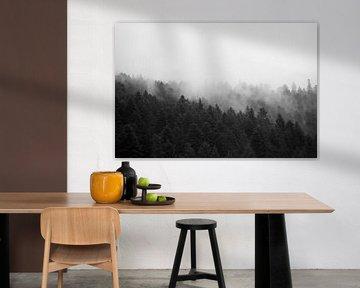 Forrest in the Mist #1 von Floris Kok