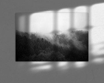 Forrest in the Mist #2 von Floris Kok
