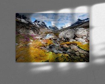 Gletserstroompje in Groenland van Wilco & Casper