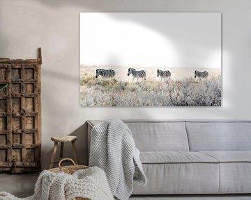 Zebras auf dem Vormarsch von Gerard van Roekel