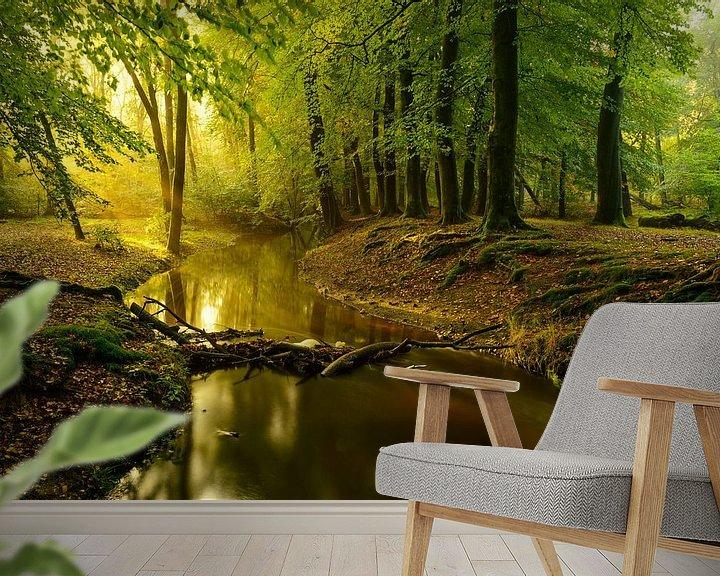 Sfeerimpressie behang: Leuvenumse Beek in het Leuvenumse bos op een vroege herfst ochtend van Sjoerd van der Wal
