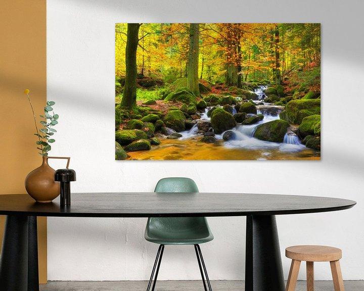 Sfeerimpressie: Herfst in het Zwarte Woud van Thomas Herzog