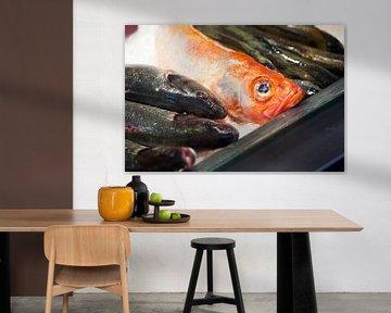 Droevig kijkende vis op de markt van Peter de Kievith Fotografie