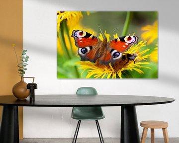 Pfau und eine Biene auf einer Blume von Peter de Kievith Fotografie