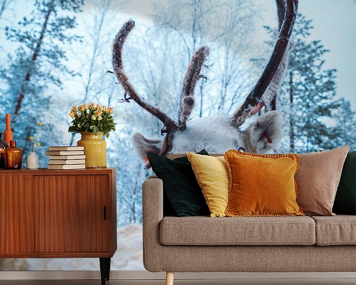 Sfeerimpressie behang: Rendier in Lapland van Prints by Abigail Van Kooten
