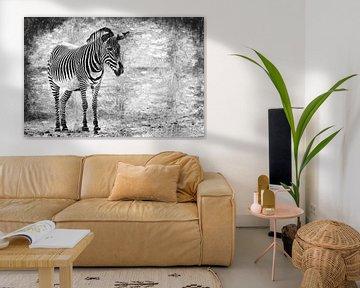 Zebra (schwarz und weiß, Malerei) von Art by Jeronimo