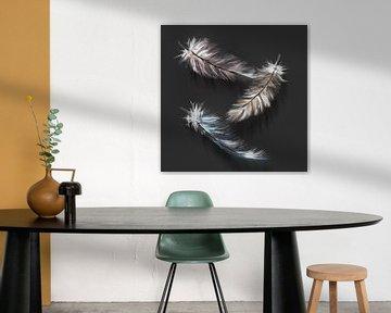 Daunenfedern - digitales Kunstwerk mit anthrazitfarbenem Hintergrund von Emiel de Lange