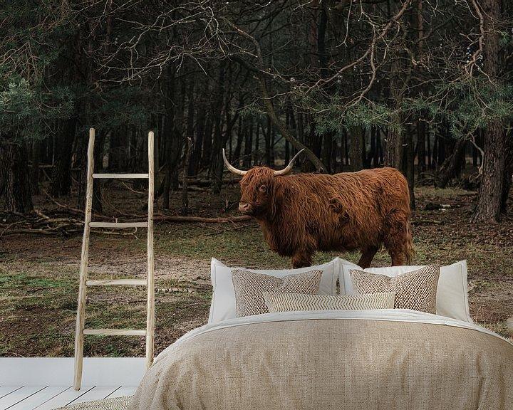 Beispiel fototapete: Schottischer Highlander | Bussemerheide | Natur | Kunst | Kunstdruck von Mascha Boot