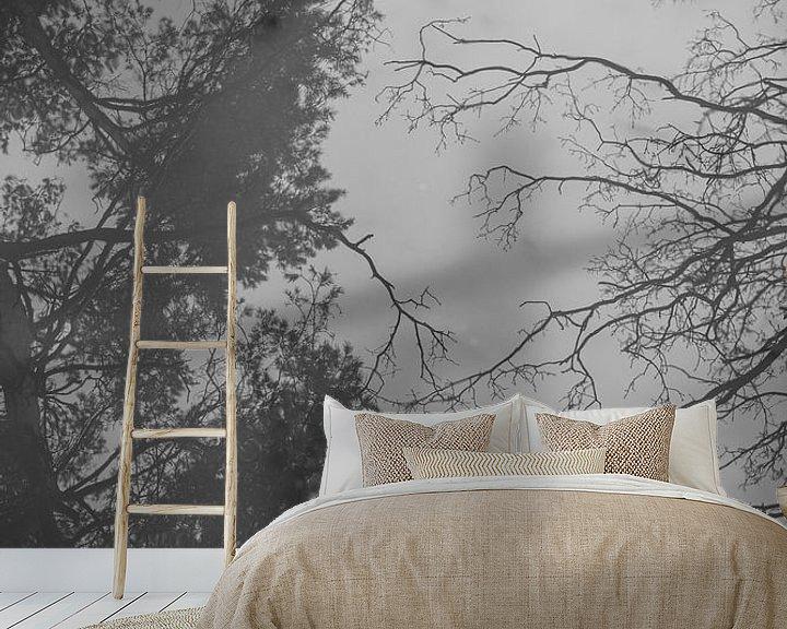 Sfeerimpressie behang: Spiegelbeeld van bomen | reflectie | zwart wit van Mascha Boot