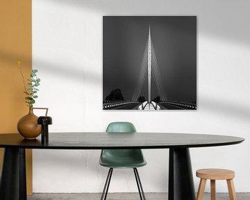 Die Harfenbrücke in schwarz und weiß