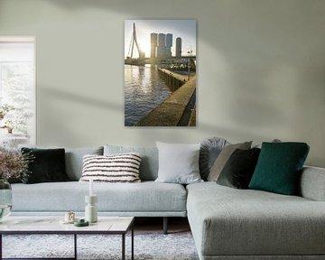 Erasmusbrücke und südliches Ende von Rotterdam von Remco Swiers