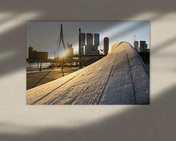 Berijpt kunstwerk twist&shout bij Erasmusbrug Rotterdam