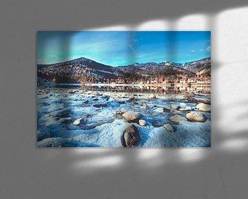 Das Ufer im Fokus am Walchensee von Roith Fotografie