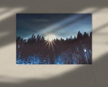 Bayerische Sonne küsst Wald von Roith Fotografie