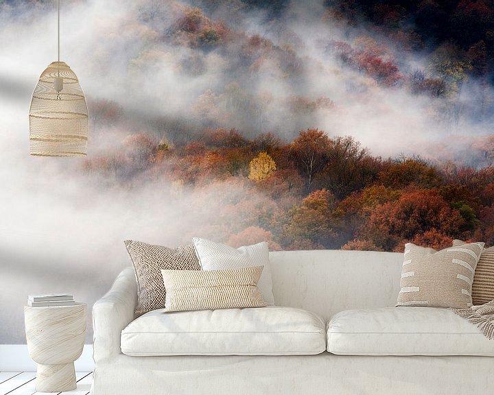 Sfeerimpressie behang: Luchtfoto van mistige bossen in herfst kleuren van Peter de Kievith Fotografie