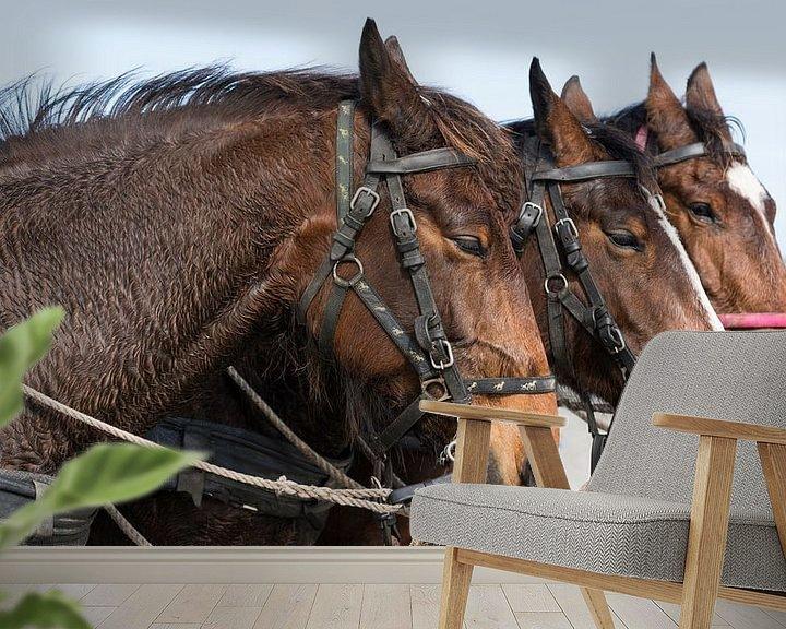Sfeerimpressie behang: Paardenhoofden van Greetje van Son