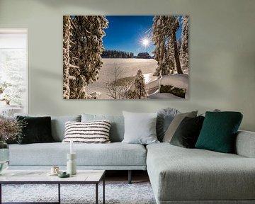 Winter aan de Mummelsee in het Zwarte Woud van Werner Dieterich