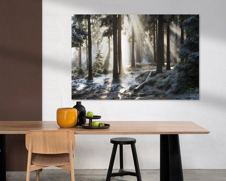 Beispiel: Winterwald von Oliver Henze