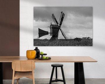 Poldermühle mit Vogel von Paul Veen
