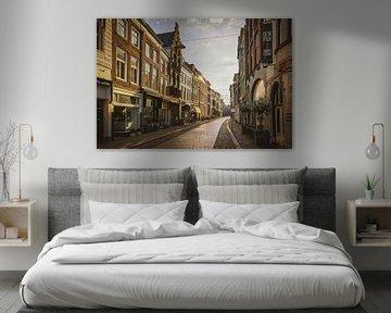 Dordrecht von seiner schönsten Seite von Dirk van Egmond