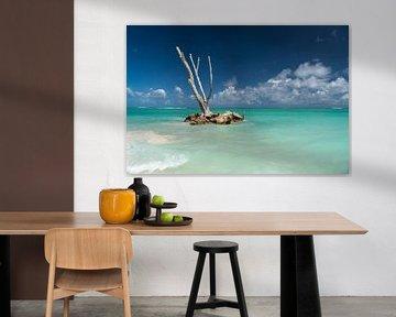 Punta Cana, Dominikanische Republik von Peter Schickert