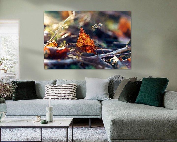 Sfeerimpressie: Sfeervol strijklicht op herfstblad van Fotografiecor .nl