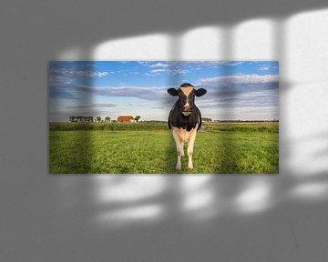 Kuh in der Groninger Landschaft von Marc Venema