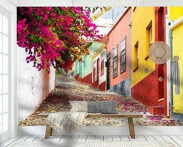 Kleurrijk straatje in Santa Cruz, La Palma, Canarische eilanden van Marcel Bakker