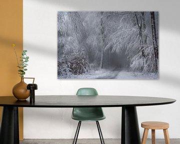 Soft Winter Magic.