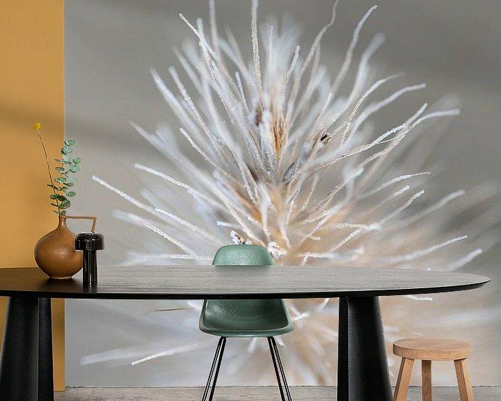 Sfeerimpressie behang: Bevroren dauw van Miss Antenna