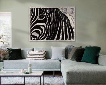 Zebra auf afrikanischer Karte von Studio Malabar