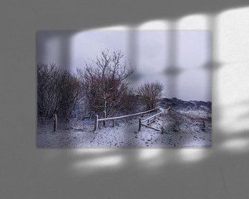 Winter op Texel - Vuurtorenweg - Vuurtoren Eierland van Texel360Fotografie Richard Heerschap