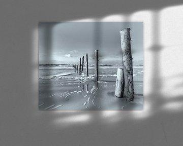 La magie de la mer du Nord II sur Kirsten Warner