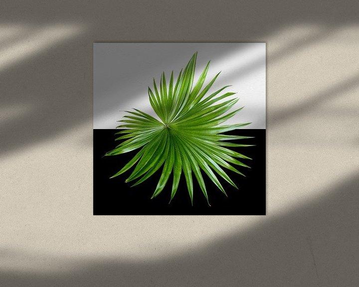Sfeerimpressie: groen op zwart en wit van Andreas Wemmje