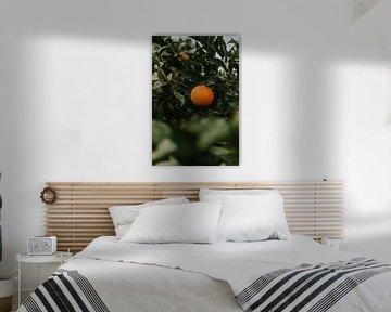 impression orange colorée sur Marloes Floor