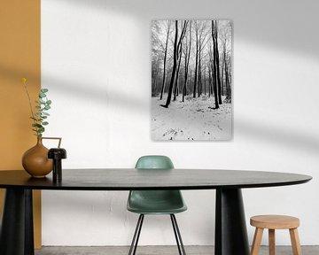 Verschneite Bäume und Landschaft in den Limburger Hügeln von Kim Willems