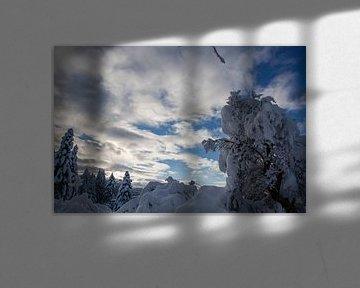 Winterlandschap met hemelwolken in de winter van Martin Steiner