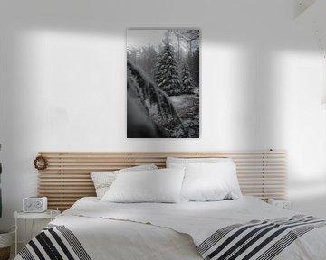 Kerstbomen in de sneeuw (moody) van Tom Knotter