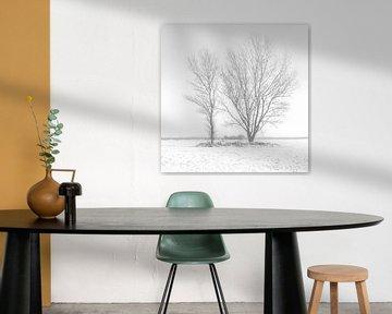 Twee bomen in de sneeuw