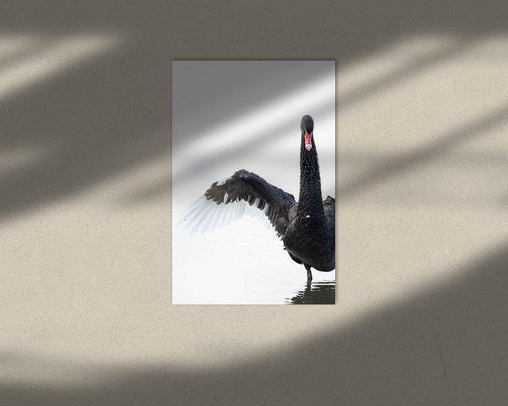 Sfeerimpressie: Zwarte Zwaan van Sander Meertins