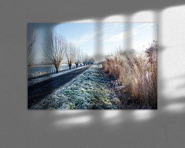 Winters polderlandschap