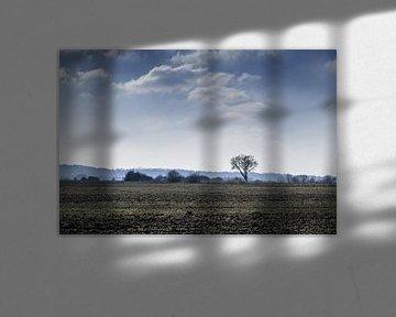 Op een koude dag in de Ooijpolder, de kale boom en gure wind. van Lieke van Grinsven van Aarle