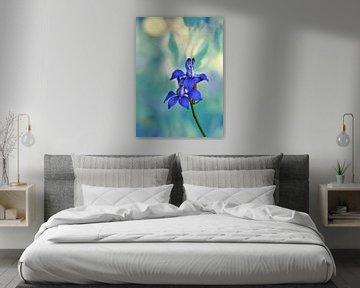 Blauwe Consolida bloemen van Corinne Welp