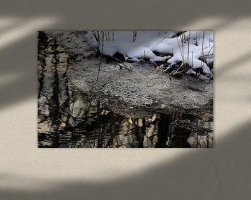 Aan de oevers van de beek in de winter van Thomas Jäger